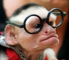 velhinha-oculos-grande